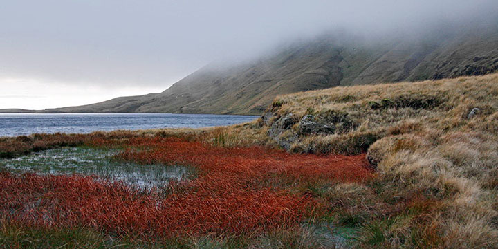 Red Pool and More Hill Fog